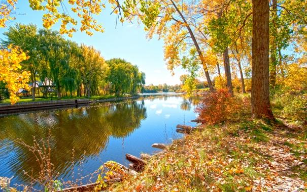 Фото обои зелень, солнце, деревья, река, дома