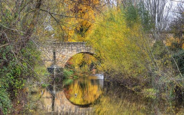Фото обои осень, деревья, мост, парк, арка, Испания, Сеговия