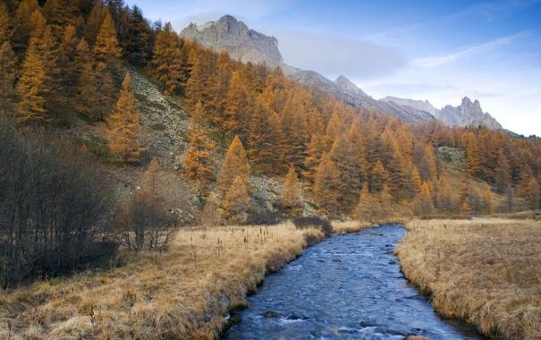 Фото обои лес, небо, пейзаж, река, Осень, долина