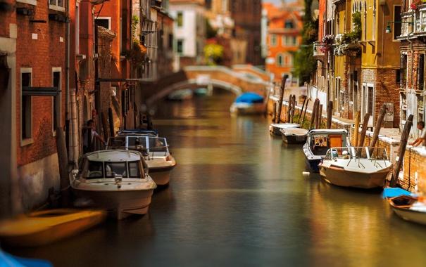 Фото обои цветы, мост, лодка, дома, утро, катер, Италия