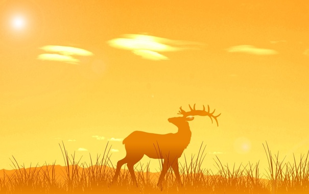 Фото обои животные, солнце, закат, природа, восход, олень