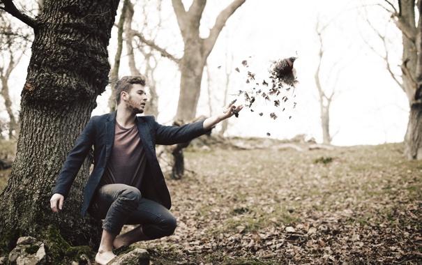 Фото обои листья, птица, ситуация, человек