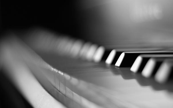 Фото обои макро, клавиши, черно-белое, пианино