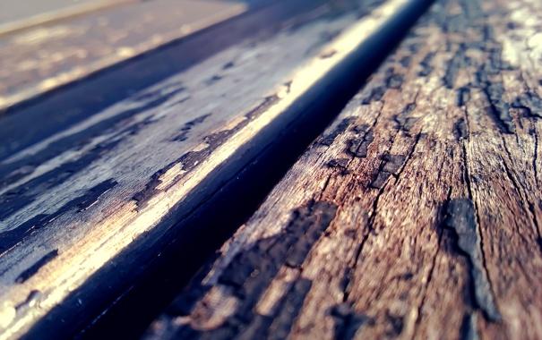 Фото обои доски, текстура, кора, солнечно, деревяшки