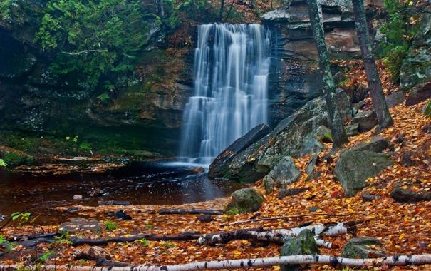 Фото обои осень, лес, листья, деревья, река, камни, водопад