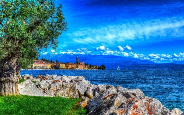 Фото обои море, небо, трава, облака, горы, камни, дерево