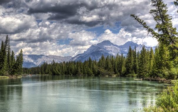Фото обои лес, горы, озеро, Канада, Альберта, Banff National Park, Alberta