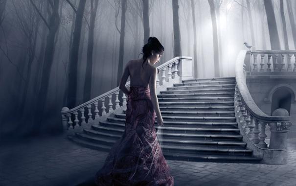 Фото обои девушка, свет, деревья, птица, лестница, ступеньки