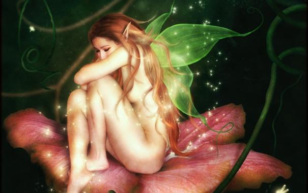 Фото обои цветок, девушка, поза, фантастика, эльф, тело, крылья