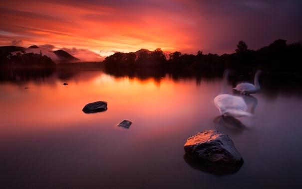 Фото обои небо, облака, горы, птицы, озеро, камни, hdr
