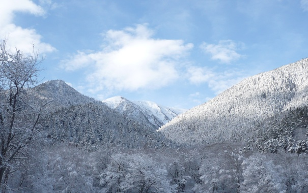 Фото обои зима, лес, небо, облака, снег, деревья, горы