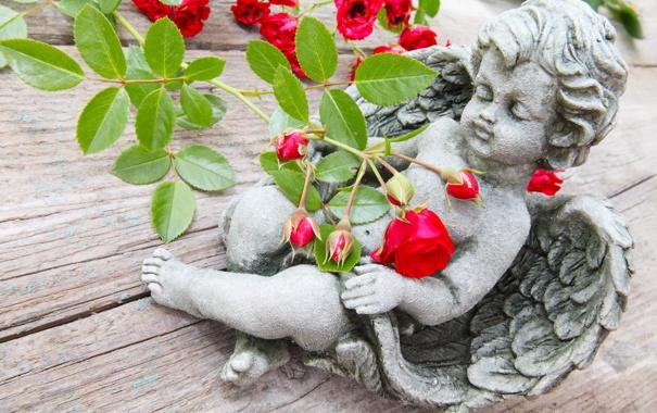 Фото обои стол, розы, ангел, ветка, купидон