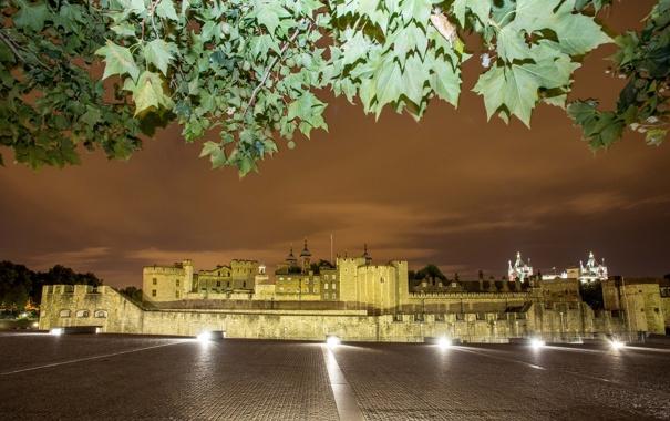 Фото обои небо, листья, ночь, огни, стена, Англия, Лондон