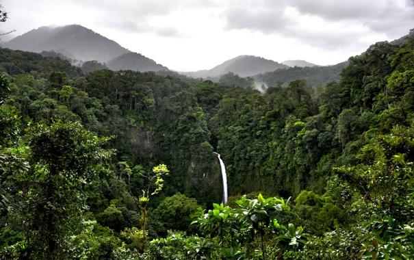 Фото обои лес, облака, горы, водопад, джунгли