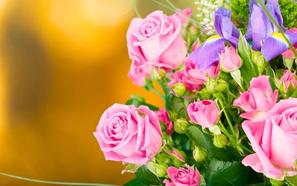 Фото обои фон, розы, букет, бутоны, ирисы