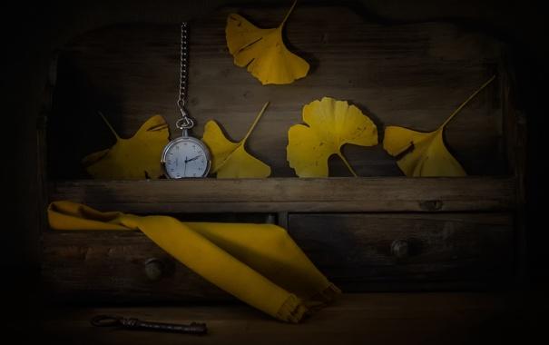Фото обои листья, часы, ключ