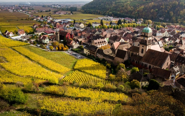 Фото обои дома, Франция, Colmar, луга, плантации, поля