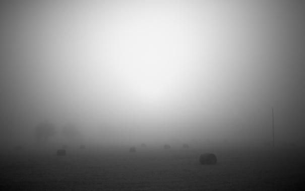Фото обои природа, туман, фото, фон, обои, пейзажи, дымка