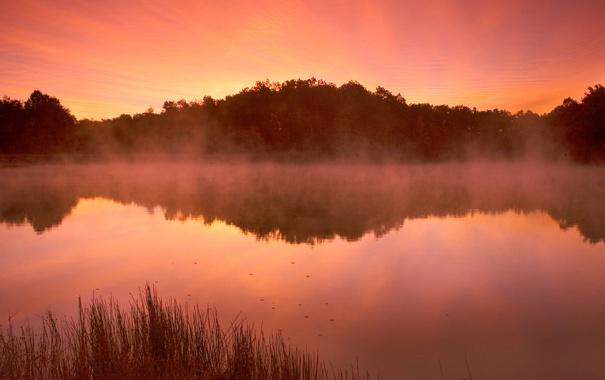 Фото обои небо, вода, деревья, пейзаж, закат, природа, озеро
