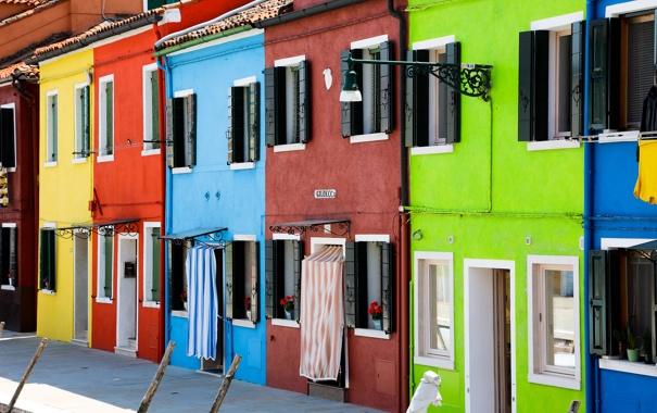 Фото обои цветы, краски, окна, дома, Италия, Венеция, тротуар