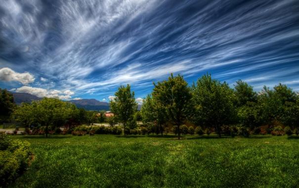 Фото обои облака, небо, трава, деревья