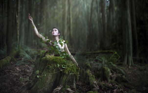Фото обои woods, conceptual, selfportrait