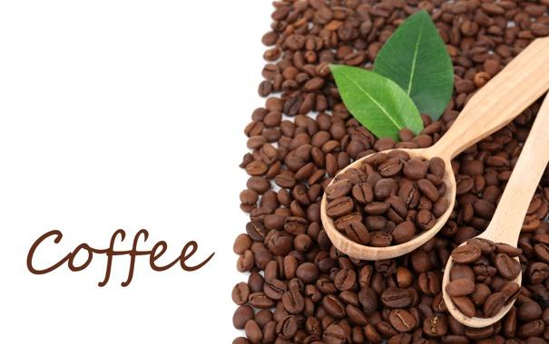 Фото обои leaves, beans, coffee, spoon