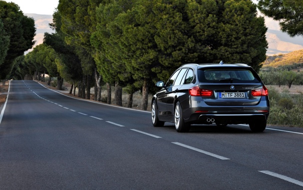 Фото обои дорога, деревья, BMW, БМВ, вид сзади, универсал, 3 Series