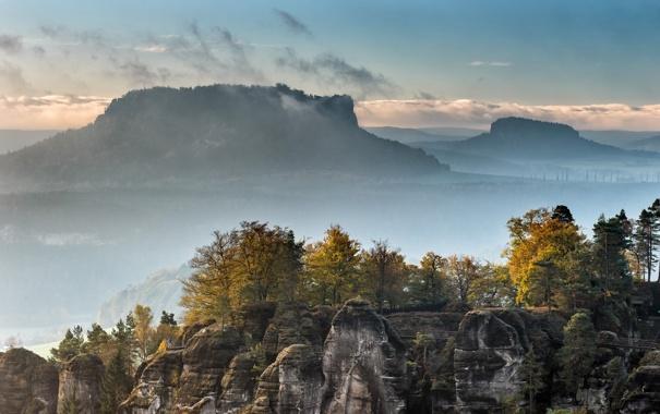 Фото обои лес, деревья, горы, туман, скалы
