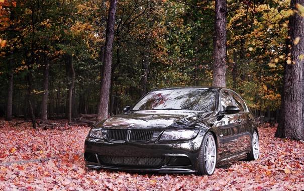 Фото обои осень, тюнинг, BMW, 335i