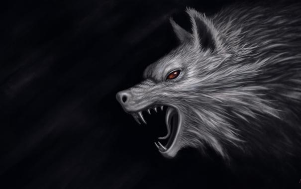 Фото обои темный фон, волк, голова, арт, пасть, красные глаза, Olah Marin