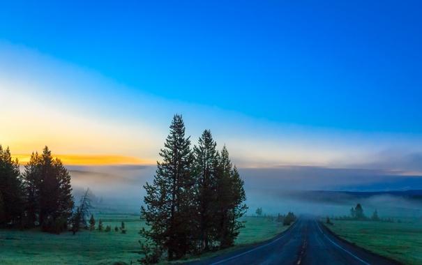 Фото обои дорога, небо, деревья, горы, туман
