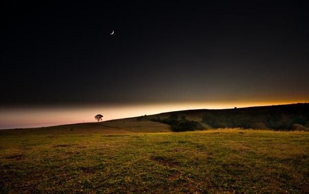 Фото обои поле, закат, ночь, месяц