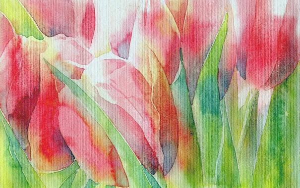 Фото обои цветы, картина, тюльпаны