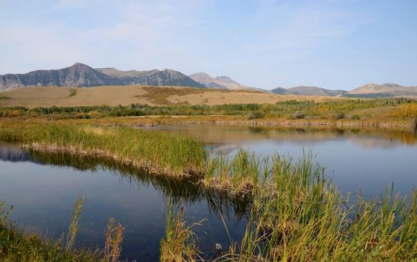 Фото обои трава, вода, горы, пруд, болото