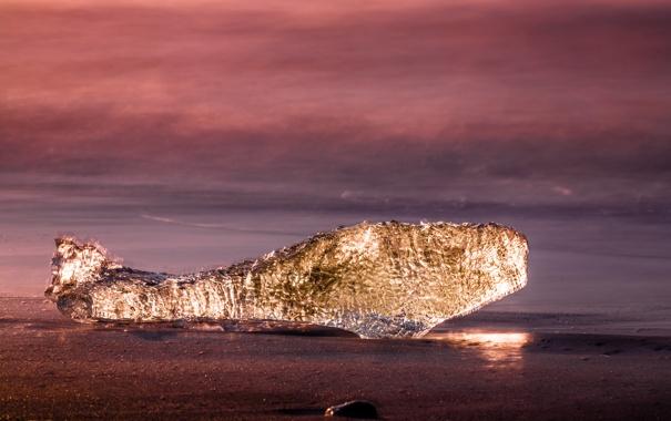Фото обои песок, свет, океан, берег, льдинка