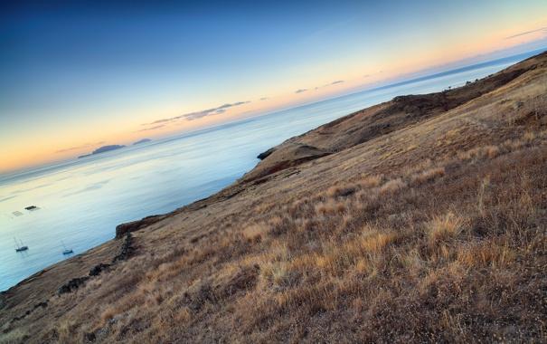 Фото обои горизонт, завален, Yellow Field