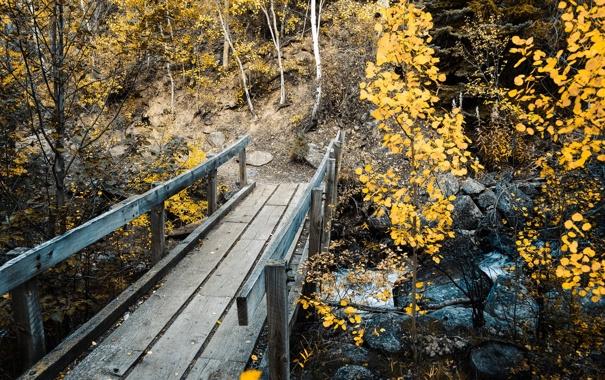 Фото обои landscape, bridge, autumn, Colorado