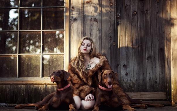Фото обои собаки, девушка, дом