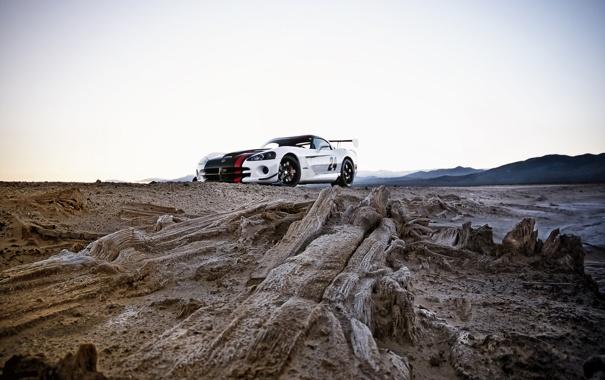 Фото обои тачки, viper, додж, cars, dodge, auto wallpapers, авто обои