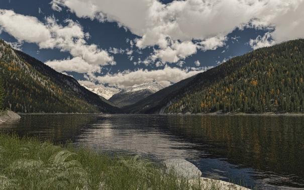 Фото обои лес, облака, деревья, горы, озеро, холмы, арт