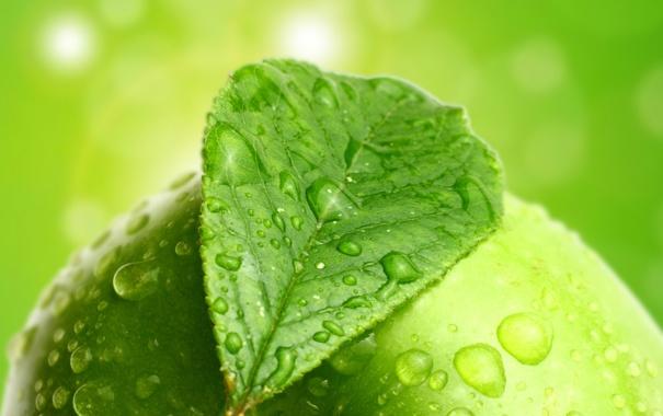 Фото обои капли, лист, яблоко, боке