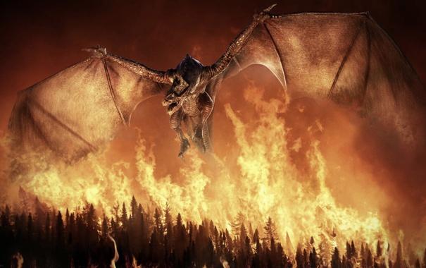 Фото обои лес, деревья, огонь, дракон, рендер
