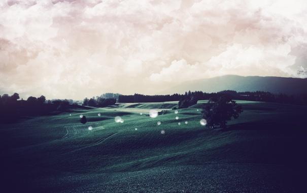 Фото обои поле, деревья, пейзаж, природа, фото, фон, холмы
