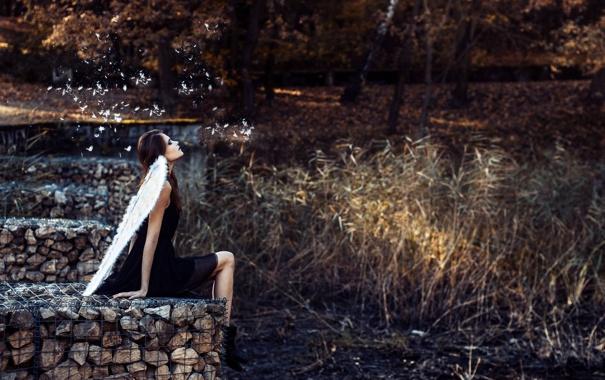 Фото обои девушка, камни, крылья, ангел