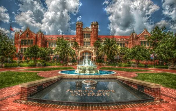 Фото обои пальмы, газон, обработка, Флорида, фонтан, США, университет