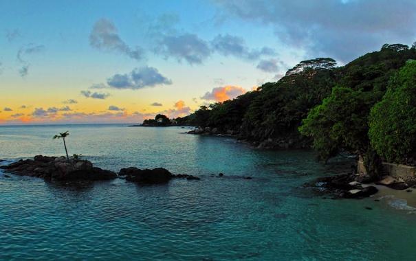 Фото обои море, деревья, закат, тропики, камни, пальмы, побережье