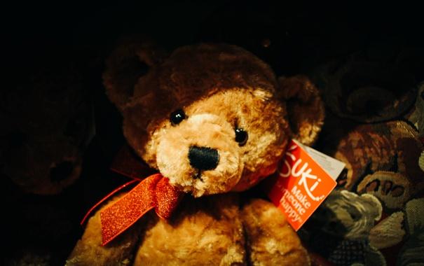 Фото обои игрушка, медведь, бант