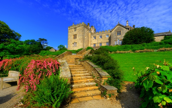 Фото обои газон, небо, солнце, лавочка, зелень, ступеньки, замок
