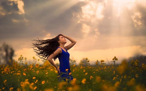 Фото обои поле, девушка, цветы, солнечные лучи